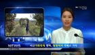 SBC 서산방송  11월 첫째주 주간뉴스