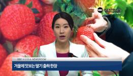 서산방송 주간뉴스 24회