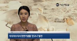 SBC서산방송 뉴스 21회