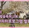 2019 제3회 해미벚꽃축제 2부 제7회 주민자치센터 프로그램 발표회