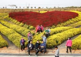 제21회 서산국화축제가 막을 내렸다.